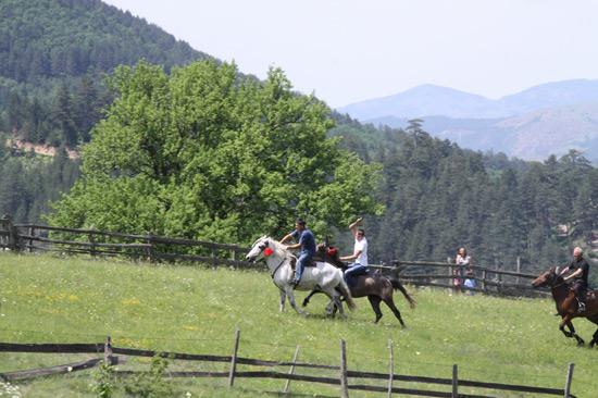 trka-konja-jablanica