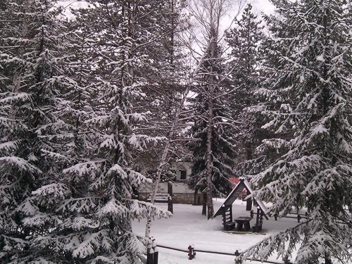 sneg-2014-1