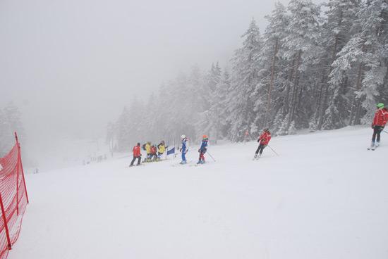 alpski-kup15-8