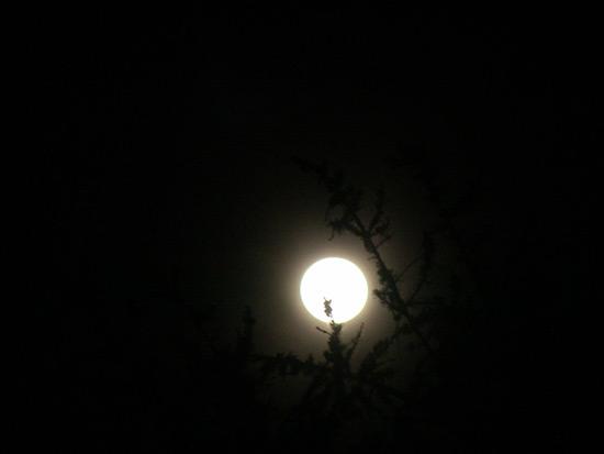 Super mesec 24.jun 2013