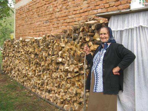Drva-kod-baka-Jele11
