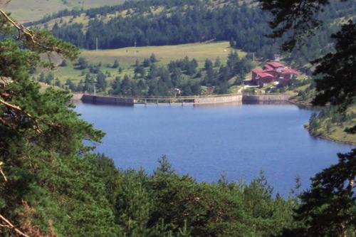 ribnica-jezero2
