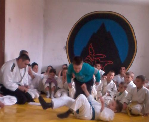 aikido-2013