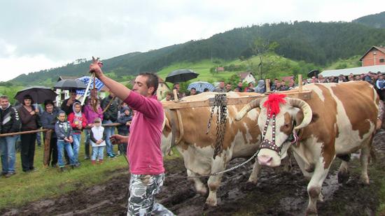 jablanica2014-6