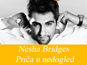 nesa-bridges